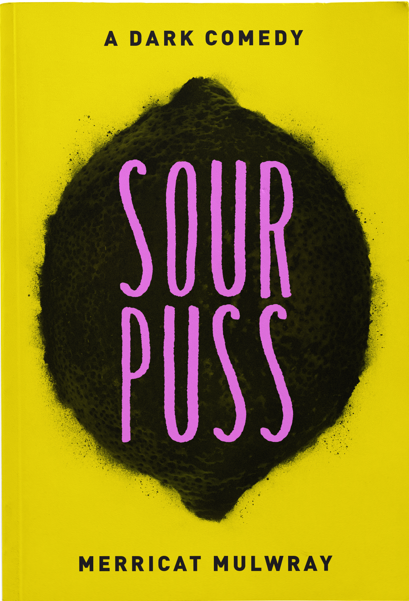 Sourpuss Paperback Book Cover